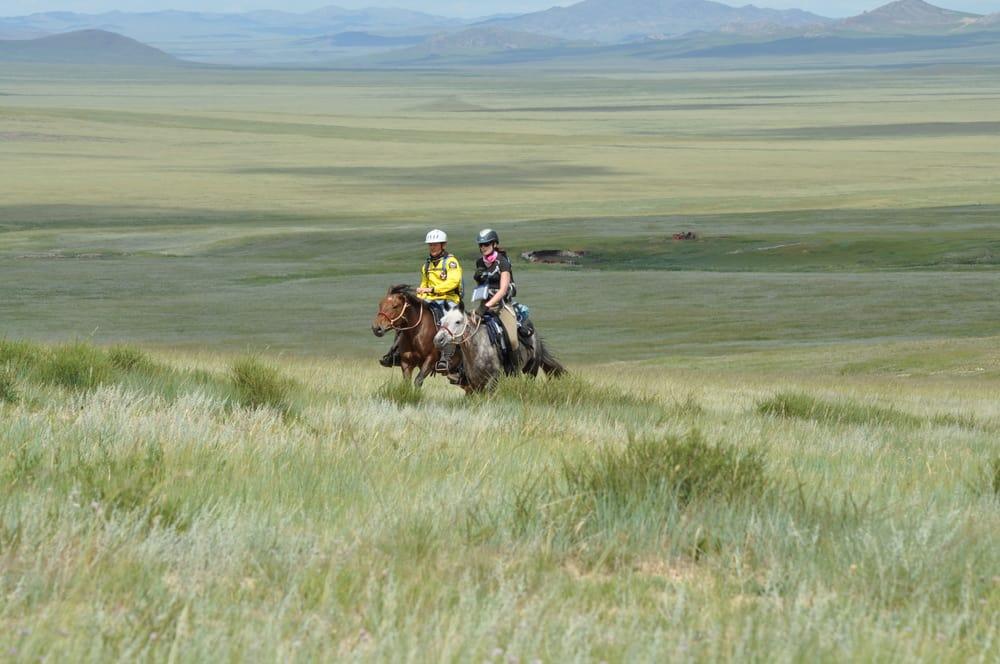 warhorses_mongolian-derby