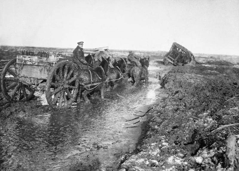 WARHorses_military horses_WW1