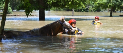 WARHorses Hurricane Harvey