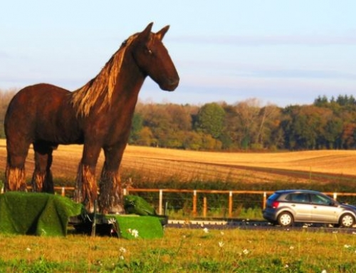 County Bans Beloved Warhorse