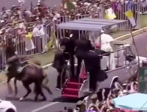 Pope Comforts Fallen Mounted Policewoman