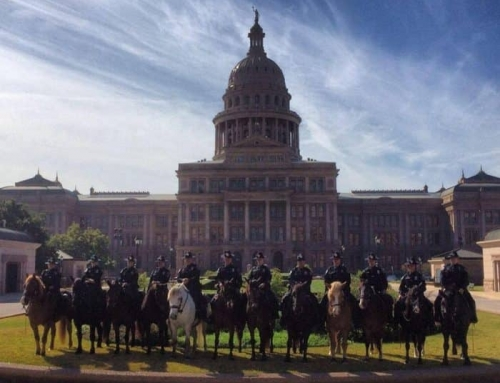 Austin Police Want to DRAFT Your Horse