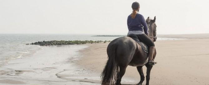 WomenOfAgeRidingHorses.com, RidingForWomen.com
