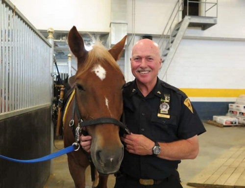 Central Park's Only Dedicated Mounted Patrol Team Retires
