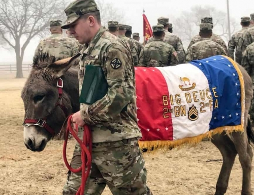 Army Mascot Receives Promotion