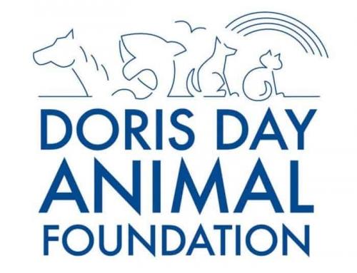 Remembering Doris Day