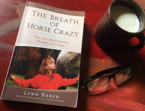 WARHorses Book Review: The Breath of Horse Crazy
