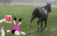 WARHorses_Whats_Your_Falling_Off_Style