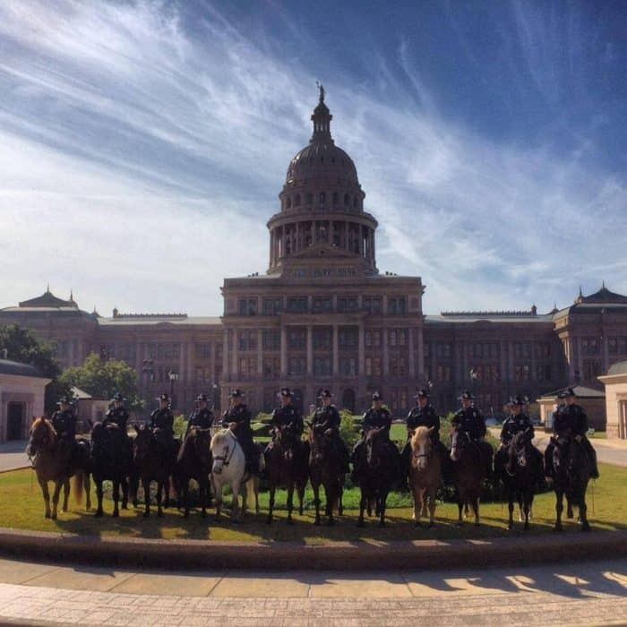 Austin Texas Police Mounted Patrol looking for new horse