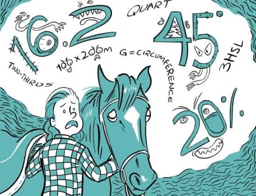I LOVE my horse. I HATE math. When Worlds Collide!