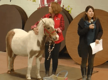 School District Hires Pony