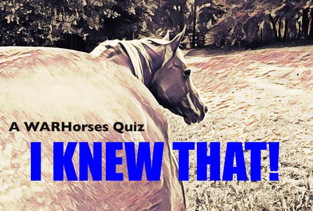 "WARHorses Quiz ""I Knew That – Basics"""