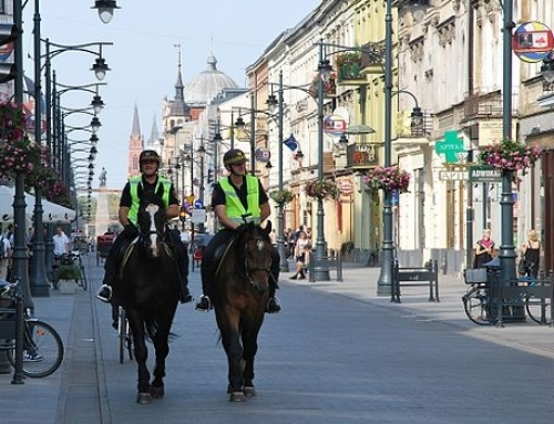 Poland Proposes Pensions for Working Dogs and Horses